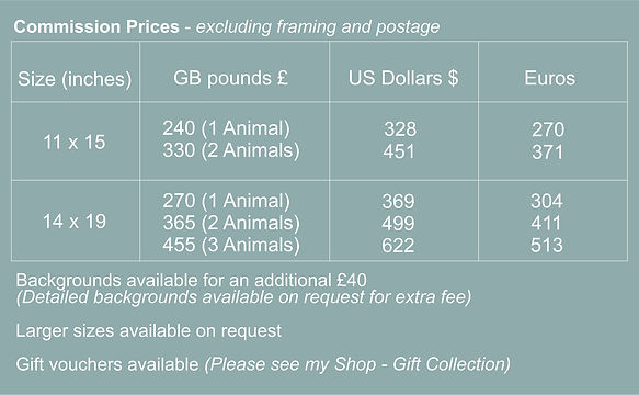 commision prices 2021.jpg