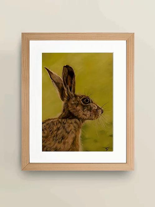 A4 'Summer Hare' Giclée Print
