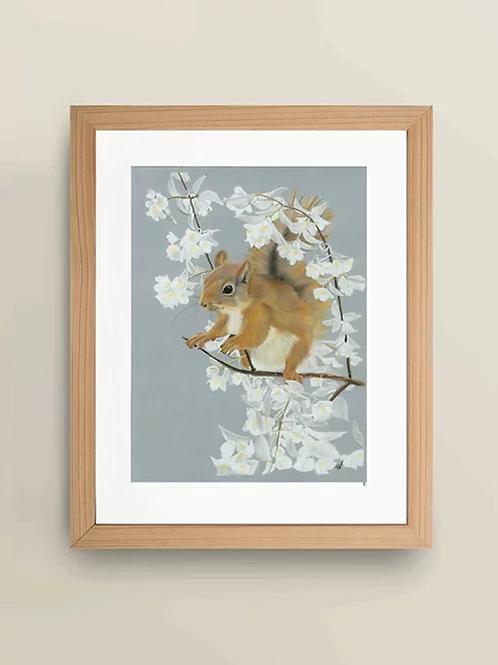 A4 'Squirrel' Giclée Print