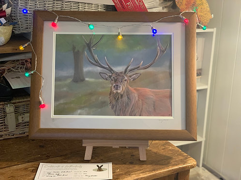 Framed Limited Edition 'Guardian of the Forest'
