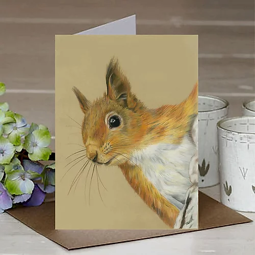 'Red Squirrel' A6 Greetings Card