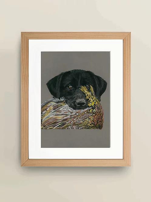 A4 'Labrador with catch' Giclée Print