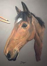 tracey walder horse.jpg