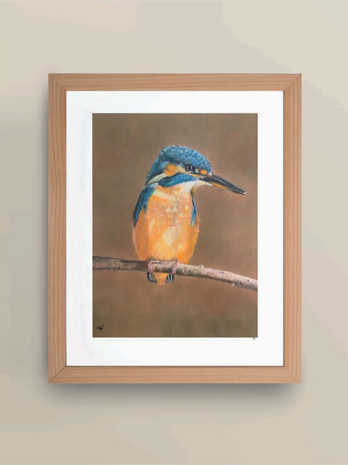 A4 'The Waiting Kingfisher' Giclée Print
