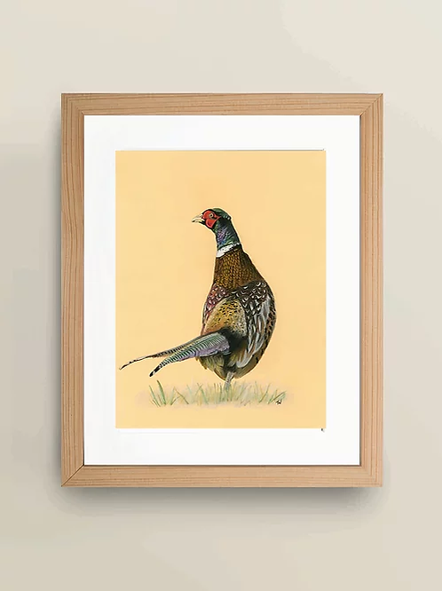 A4 'The Wandering Pheasant' Giclée Print