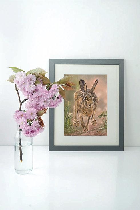 hare in frame.jpg
