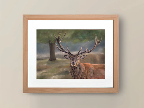 A4 'Guardian of the Forest' Giclee Print