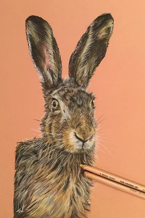 The Rufty Tufty Hare