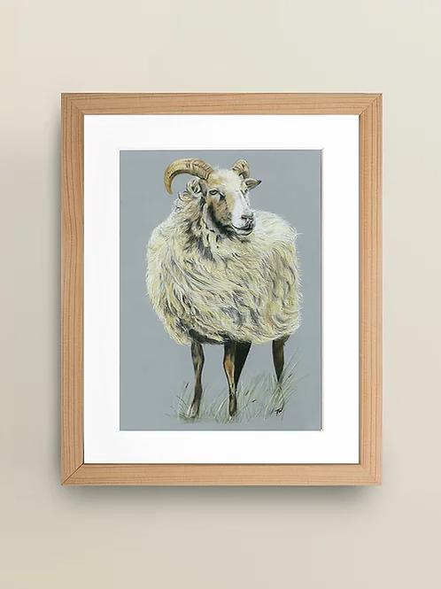 A4 'Sheep in the wind' Giclée Print