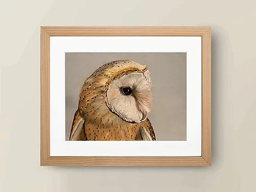 A4 'Wise Owl' Giclée Print