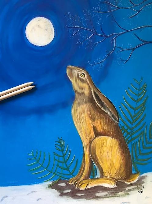 The Moon Gazing Hare