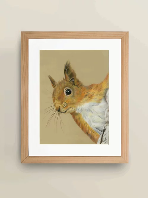A4 'Red Squirrel' Giclée Print