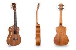 Davis Musical Instruments-DUK-23-NM_1