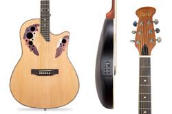 Davis Musical Instruments-ED-12-EQ_2