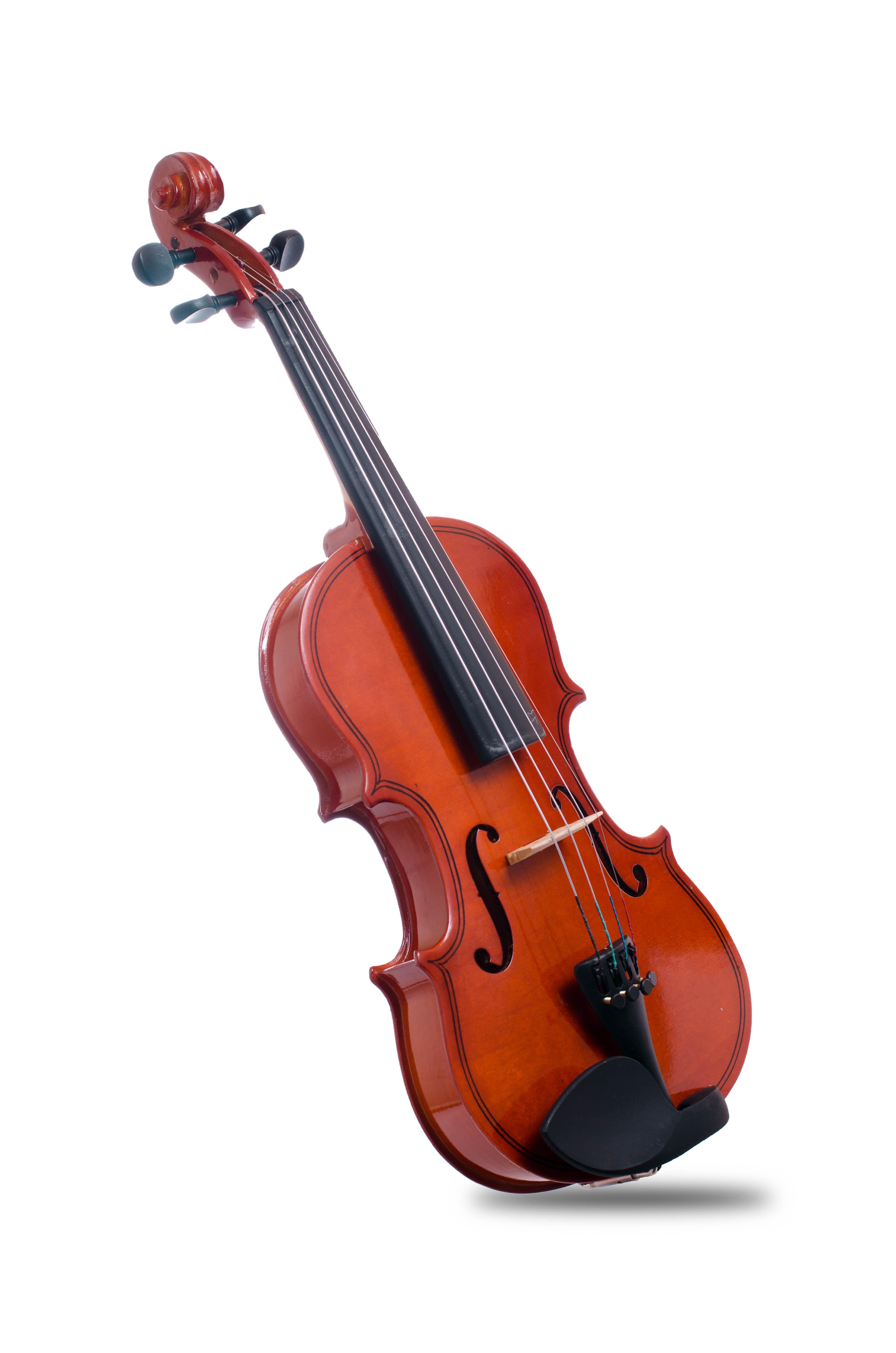 Davis Musical Instruments-DVS-VL-1'2_0