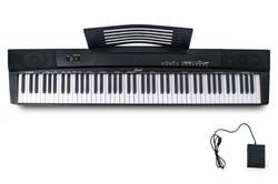 Davis Musical Instruments-D-885@1