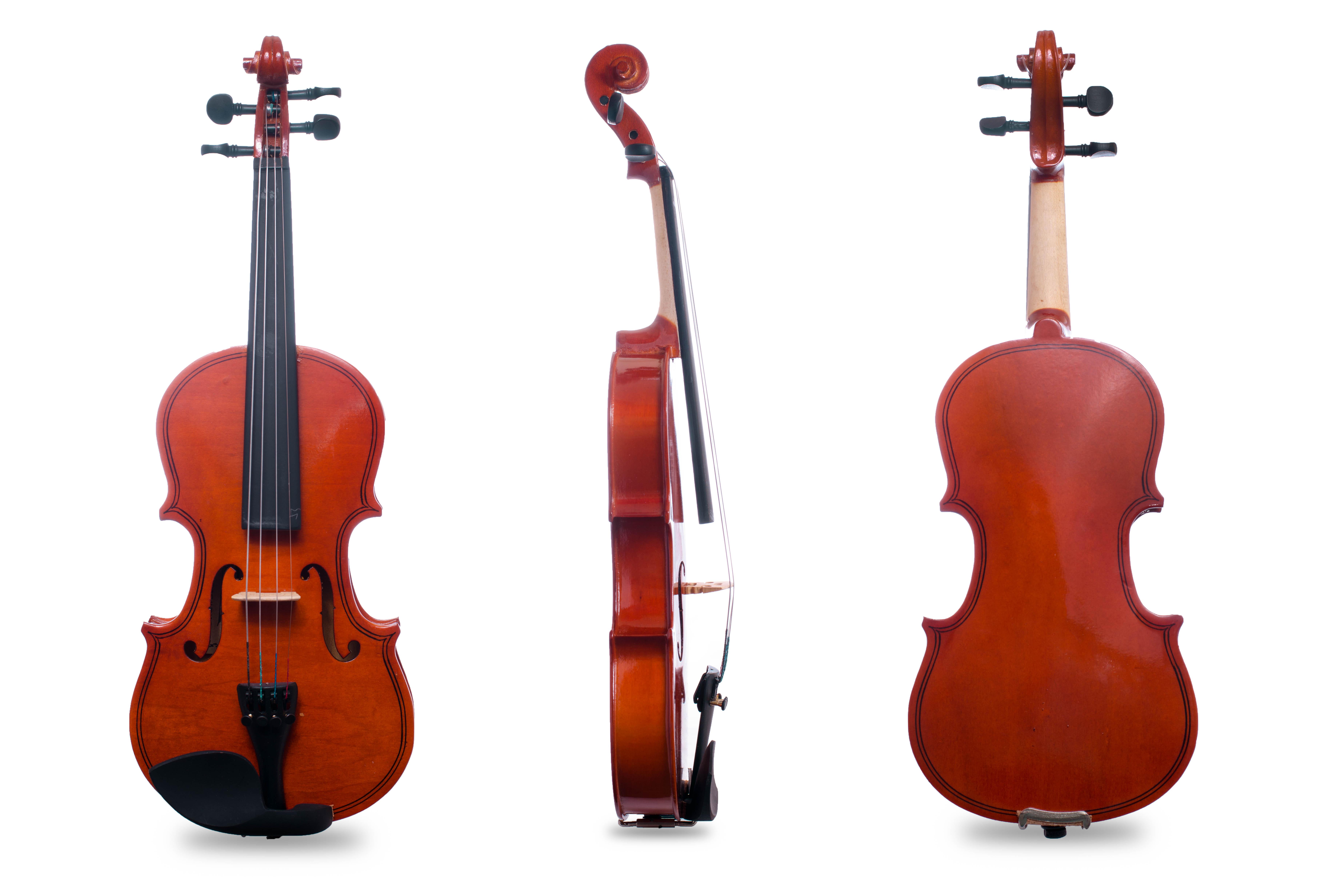 Davis Musical Instruments-DVS-VL-1'2_1
