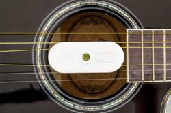 Davis Musical Instruments-DGH-WH_0