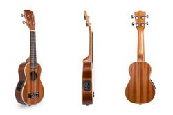 Davis Musical Instruments-DUK-21-N-EQ2_1