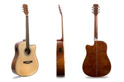 Davis Musical Instruments-DA-4103-N-EQ2_1