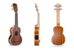 Davis Musical Instruments-DUK-21-N-EQ_1