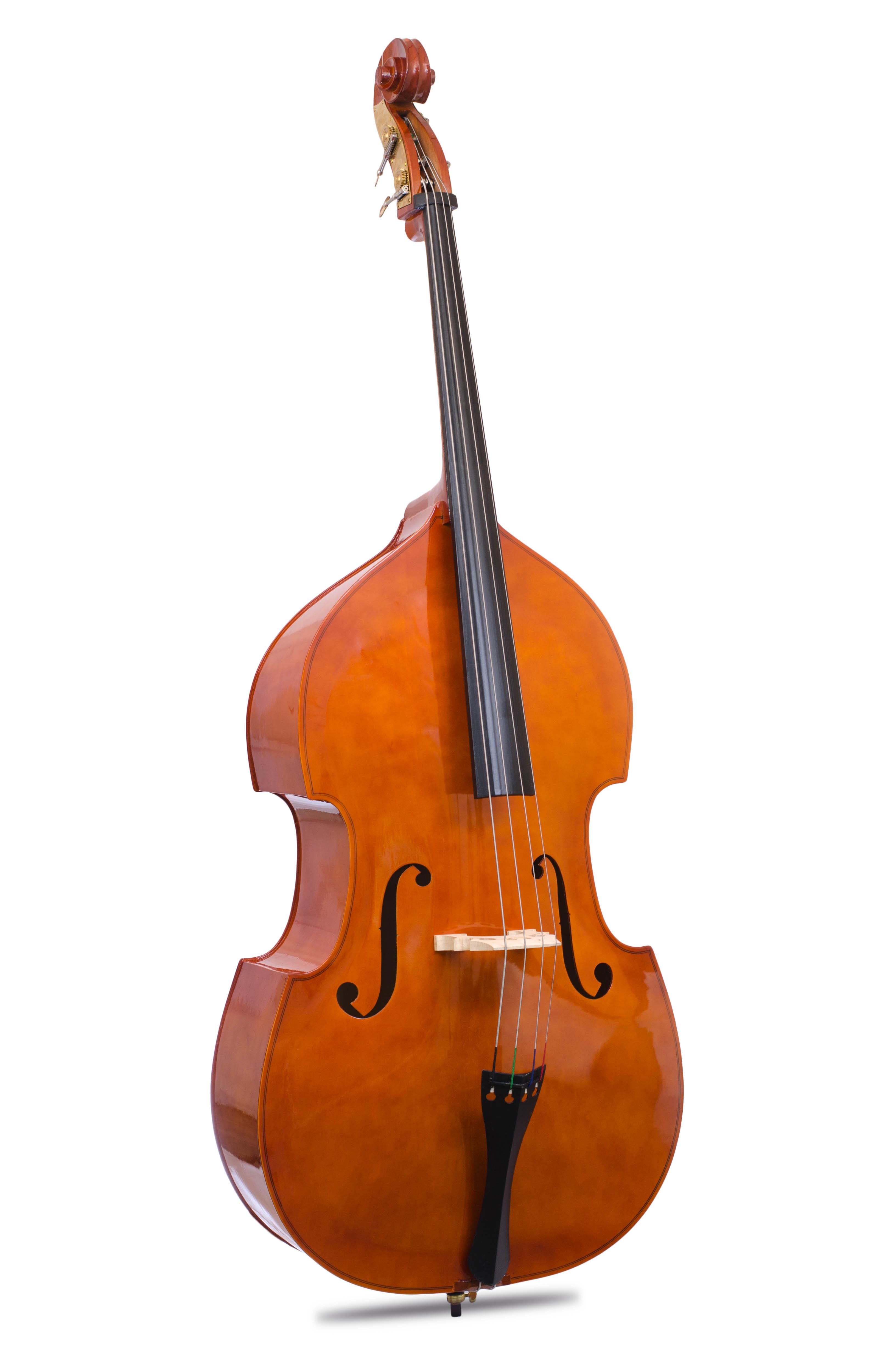 Davis Musical Instruments- double bass_0
