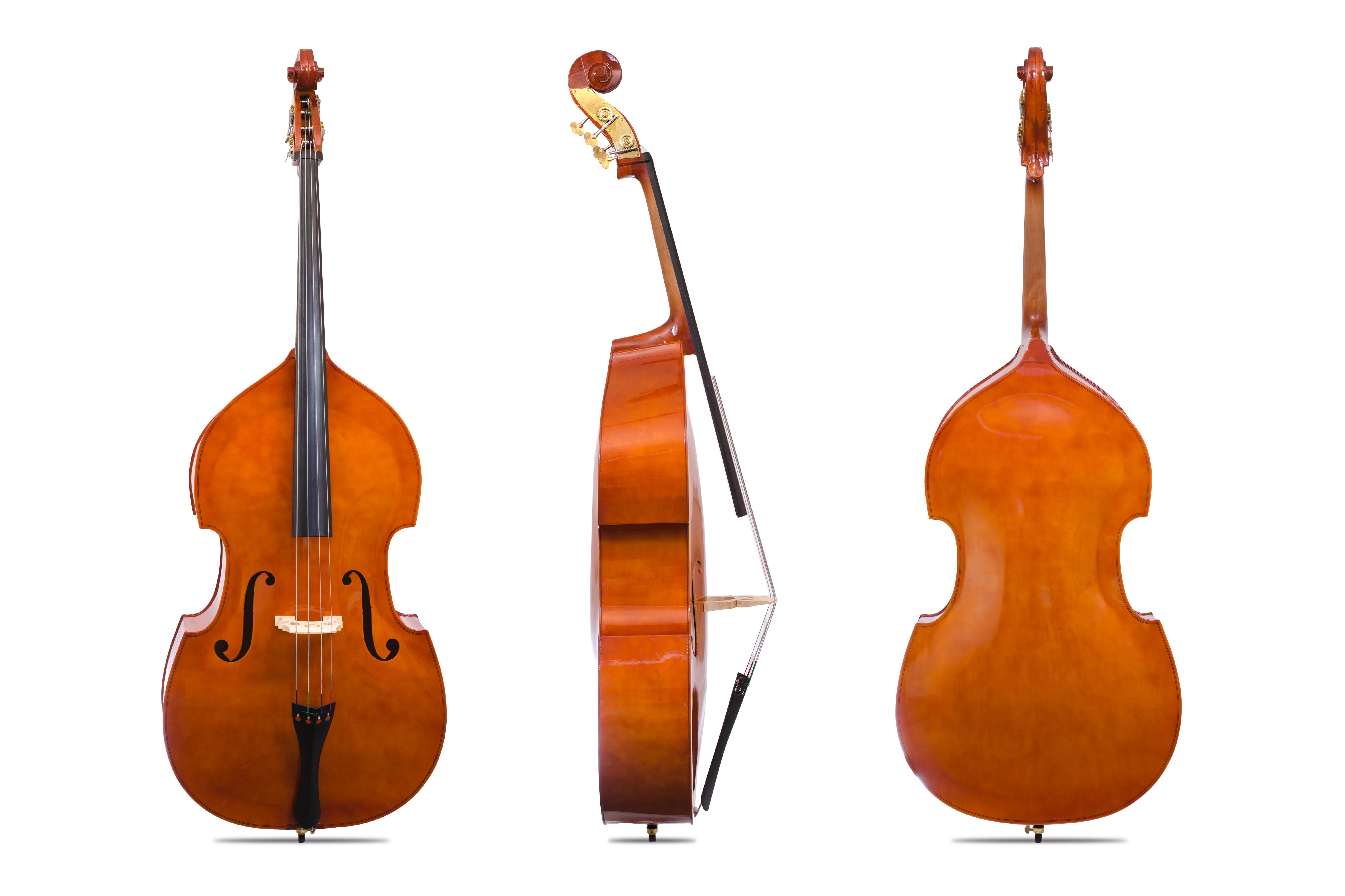 Davis Musical Instruments- double bass_1