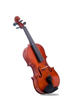 Davis Musical Instruments-DVS-VL-1'4_0