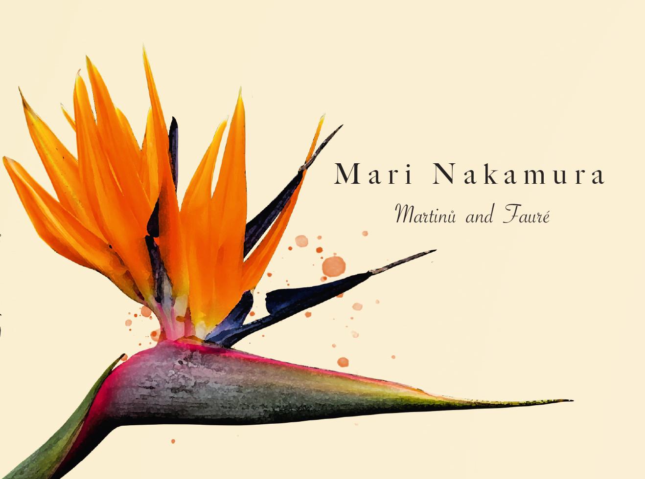 Print Design // Artwork Mari Nakamura