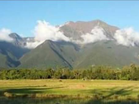 Mga inabandonang ilegal na nilagareng kahoy narekober sa San Fernando, Romblon