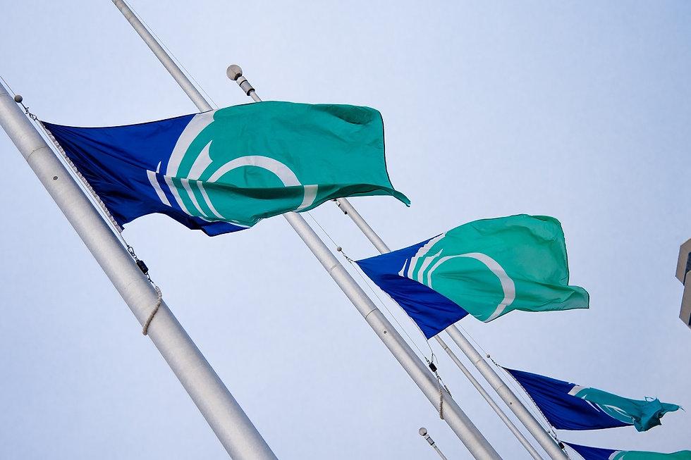 Dec 4 & 6 - Social - Flags Half Mast.jpg