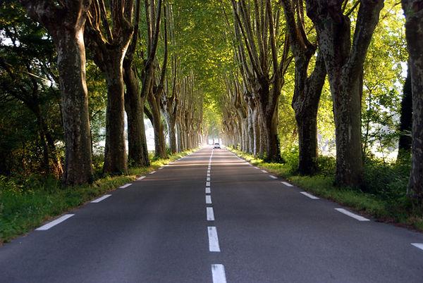 106 Provence Road.jpg