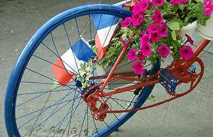130 Blue Bicycle.jpg