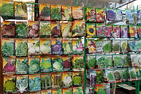 17c Seed Packets.JPG