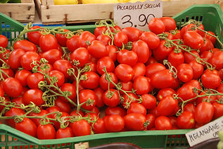 17d The Best Tomatoes.jpg