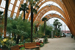 Winter Garden, Sheffield (Opera on Location 2013)