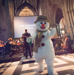 Snowman Worcester 2017 (9 of 13).jpg