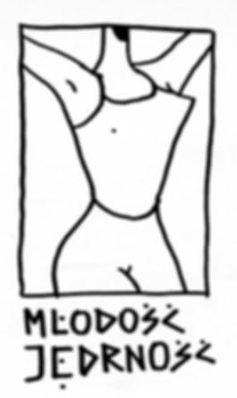 aga-bartosz-linear-illustration