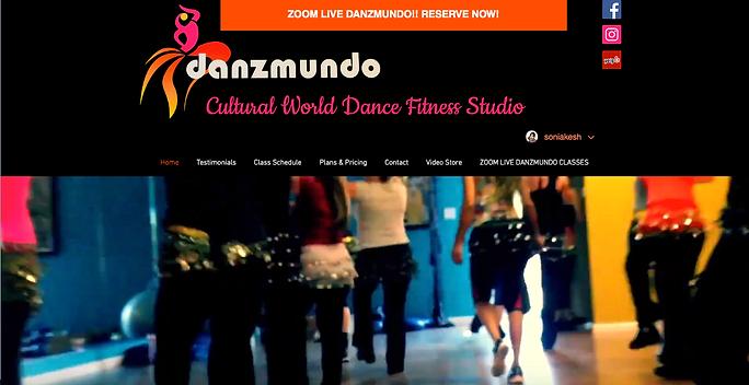 Danzmundo.com home page