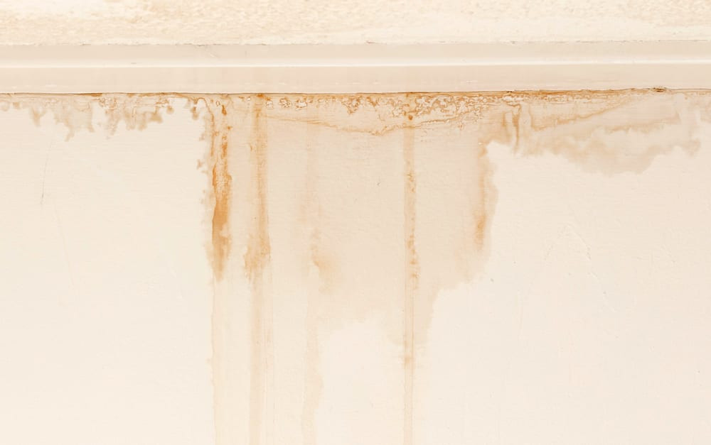 Water stain on ceiling