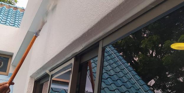 Landed Property External Facade Repainting