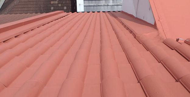 43 Brockhampton Road Roof Repair & Repainting