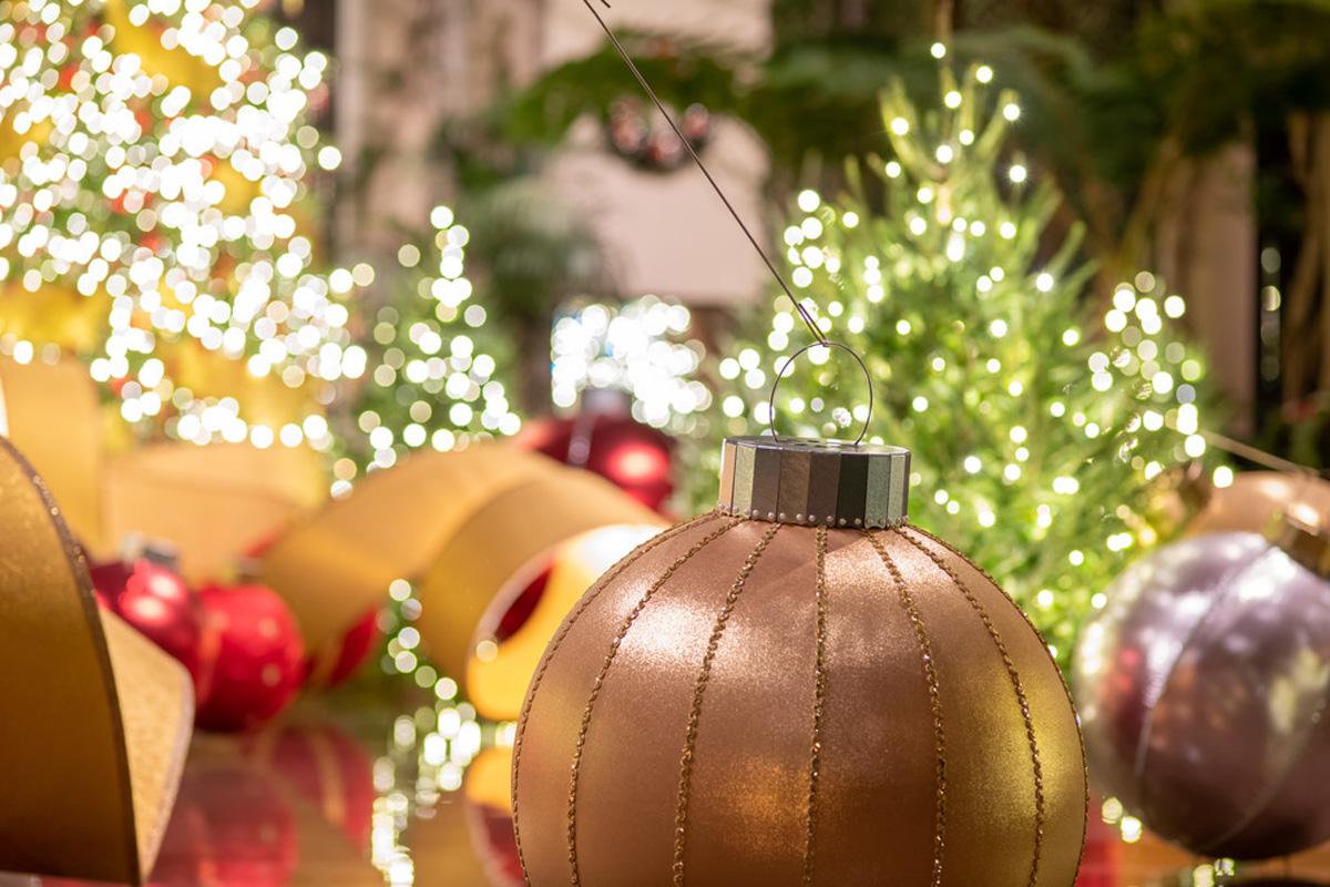 441422_Christmas_Davis_ Harold _Hank_ _L