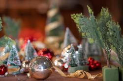 421107_Christmas Fern Floor mock up_Davi