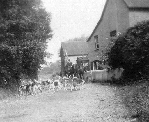 bush 1920.jpg