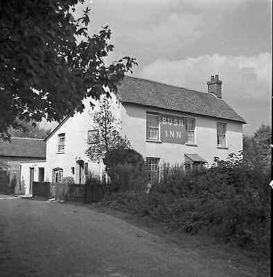 1950's The Bush Inn.jpg
