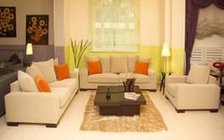 Luxury chic living room