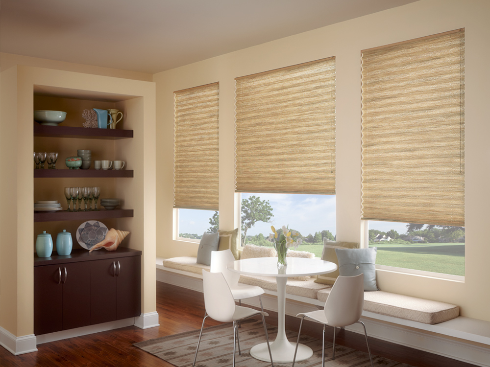 Pleated blind bright shades