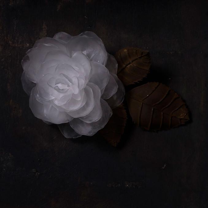 一朶の花 #4 / 薔薇  -detail-