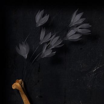 骨から咲く花 -detail-